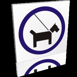 Les chiens en laisse