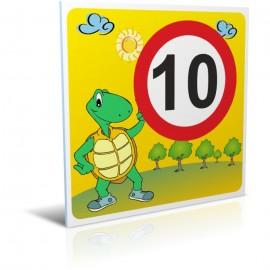 10 km/heure tortue
